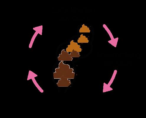 Grafik: Teufelskreis Darm